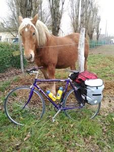 foto caballos y bici marta_web