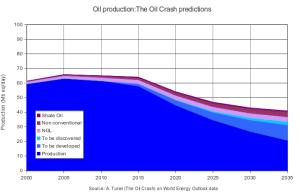 Producion neta de petroleo